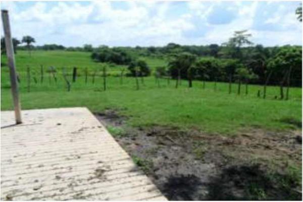 Foto de rancho en venta en s/c , encinal de ojapa, texistepec, veracruz de ignacio de la llave, 10098383 No. 30