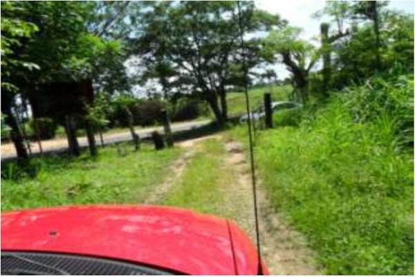 Foto de rancho en venta en s/c , encinal de ojapa, texistepec, veracruz de ignacio de la llave, 10098383 No. 32