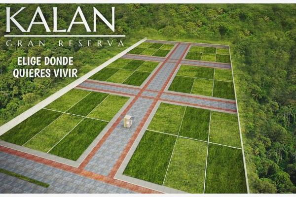 Foto de terreno habitacional en venta en s/c , los laguitos, tuxtla gutiérrez, chiapas, 0 No. 01