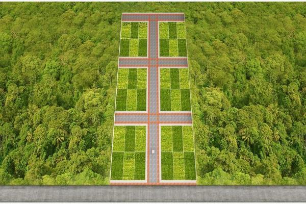 Foto de terreno habitacional en venta en s/c , los laguitos, tuxtla gutiérrez, chiapas, 0 No. 02