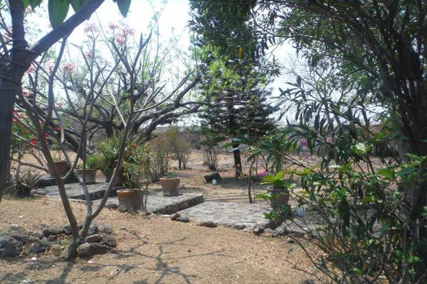 Foto de terreno habitacional en venta en sc , santa rosa, yautepec, morelos, 5439917 No. 04