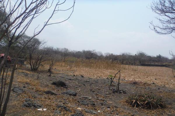 Foto de terreno habitacional en venta en sc , santa rosa, yautepec, morelos, 5439917 No. 12