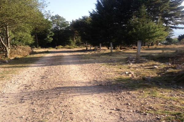 Foto de terreno habitacional en venta en sección guadalupe , san agustín berros, villa victoria, méxico, 5863999 No. 02