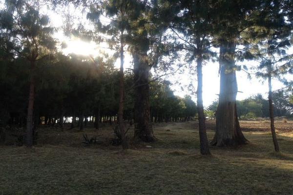 Foto de terreno habitacional en venta en sección guadalupe , san agustín berros, villa victoria, méxico, 5863999 No. 05