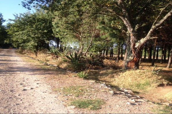 Foto de terreno habitacional en venta en sección guadalupe , san agustín berros, villa victoria, méxico, 5863999 No. 07
