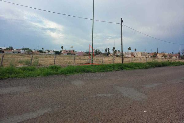Foto de terreno comercial en renta en  , sector sur, delicias, chihuahua, 5780699 No. 03