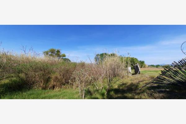 Foto de terreno habitacional en venta en segunda constitución um, soledad etla, soledad etla, oaxaca, 16412053 No. 05