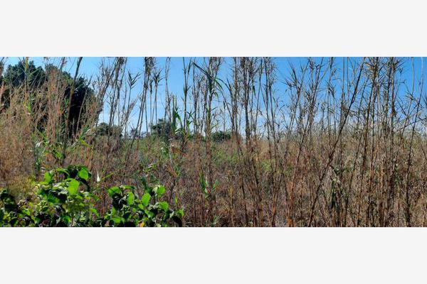 Foto de terreno habitacional en venta en segunda constitución um, soledad etla, soledad etla, oaxaca, 16412053 No. 06