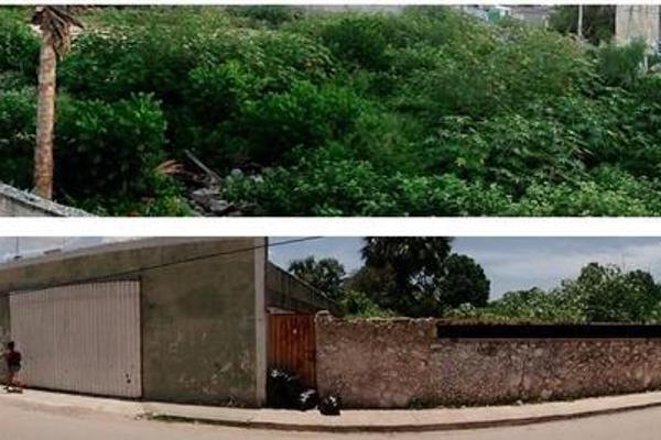 Foto de terreno habitacional en venta en  , seye, seyé, yucatán, 7221809 No. 02
