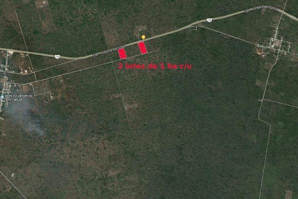 Foto de terreno habitacional en venta en  , seye, seyé, yucatán, 7858336 No. 02