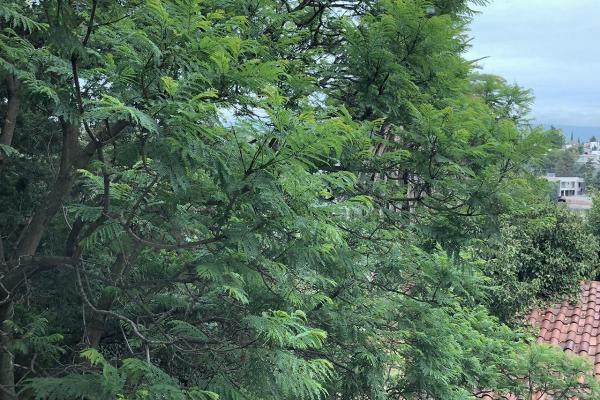 Foto de departamento en renta en sierra amatepec , lomas de chapultepec vii sección, miguel hidalgo, df / cdmx, 7495924 No. 18