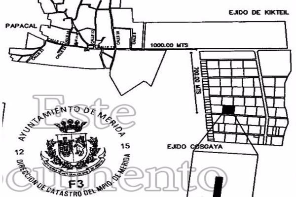 Foto de terreno habitacional en venta en  , sierra papacal, mérida, yucatán, 14028199 No. 03