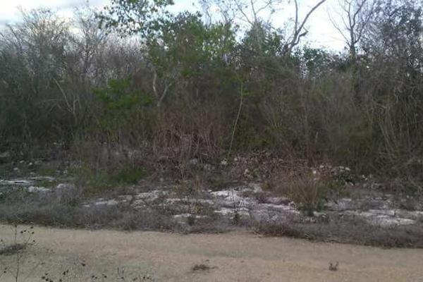 Foto de terreno habitacional en venta en  , sierra papacal, mérida, yucatán, 3221009 No. 04