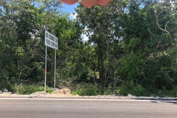 Foto de terreno habitacional en venta en  , sierra papacal, mérida, yucatán, 5915685 No. 02