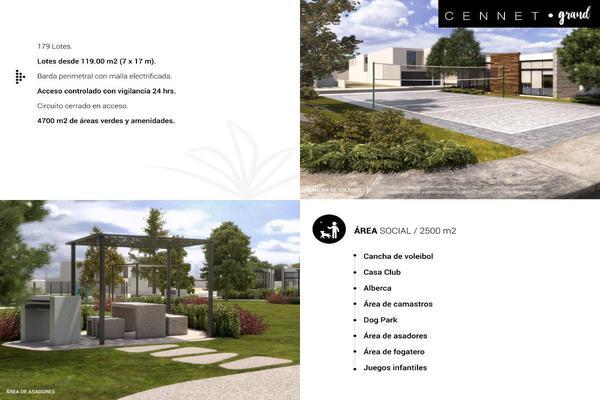 Foto de terreno habitacional en venta en  , simón diaz aguaje, san luis potosí, san luis potosí, 16030230 No. 04