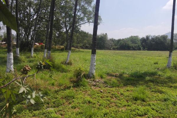 Foto de terreno habitacional en venta en sin calle , colima centro, colima, colima, 0 No. 02