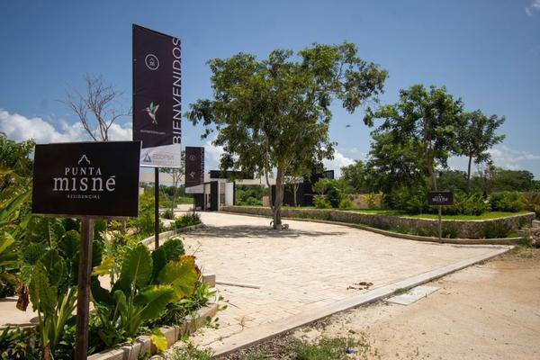 Foto de terreno habitacional en venta en sin calle , san pablo oriente, mérida, yucatán, 0 No. 05