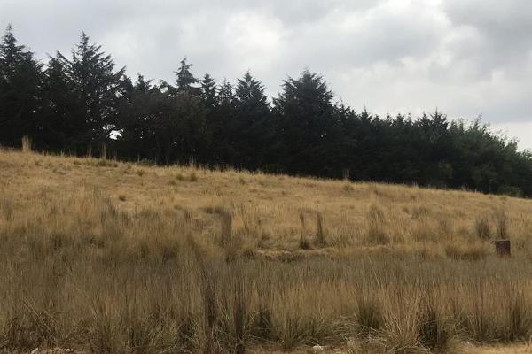 Foto de terreno habitacional en venta en sin nombre 0, cacalomacán, toluca, méxico, 5800223 No. 02