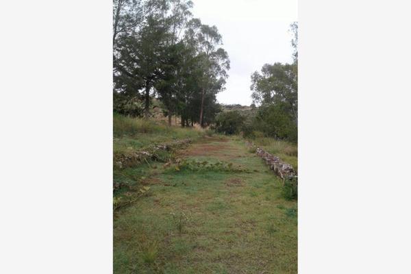 Foto de rancho en venta en sin nombre 0, otumba de gómez farias, otumba, méxico, 19968726 No. 04