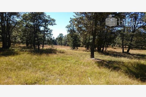Foto de rancho en venta en sin nombre 100, benito juárez (el salto centro), pueblo nuevo, durango, 9260097 No. 01