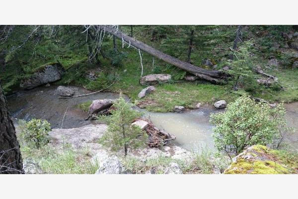 Foto de rancho en venta en sin nombre 100, benito juárez (el salto centro), pueblo nuevo, durango, 9260097 No. 07