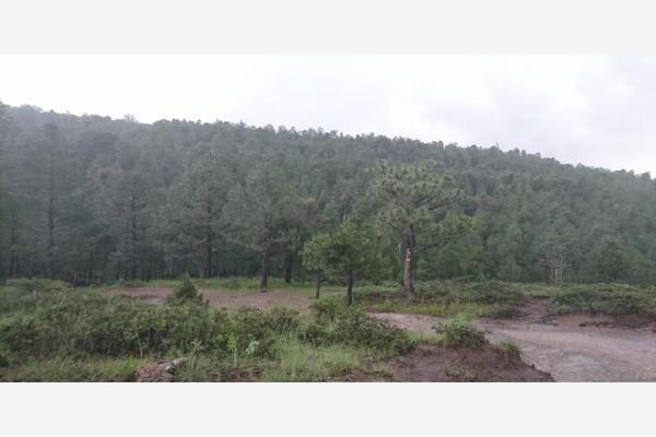 Foto de rancho en venta en sin nombre 100, benito juárez (el salto centro), pueblo nuevo, durango, 9260097 No. 09