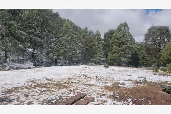 Foto de rancho en venta en sin nombre 100, benito juárez (el salto centro), pueblo nuevo, durango, 9260097 No. 03