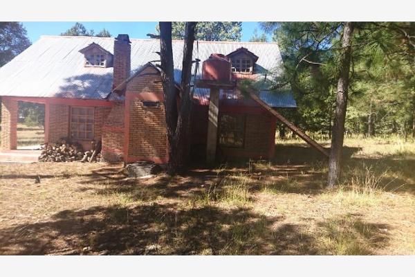 Foto de rancho en venta en sin nombre 100, benito juárez (el salto centro), pueblo nuevo, durango, 9260097 No. 05