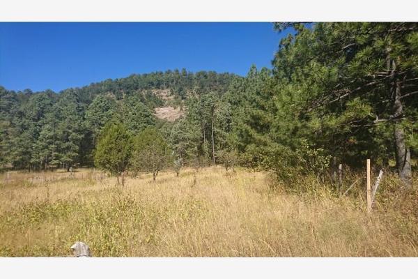 Foto de rancho en venta en sin nombre 100, benito juárez (el salto centro), pueblo nuevo, durango, 9260097 No. 06