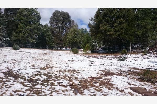 Foto de rancho en venta en sin nombre 100, benito juárez (el salto centro), pueblo nuevo, durango, 9260097 No. 11