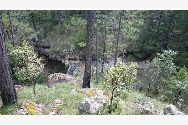 Foto de rancho en venta en sin nombre 100, benito juárez (el salto centro), pueblo nuevo, durango, 9260097 No. 13