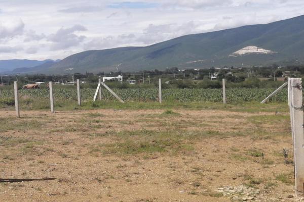 Foto de terreno habitacional en venta en sin nombre , la trinidad, tlalixtac de cabrera, oaxaca, 15234557 No. 03