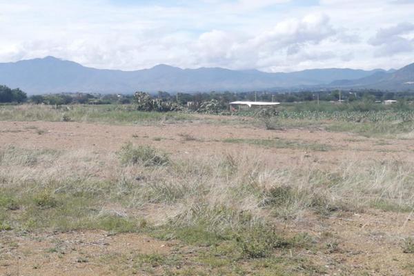 Foto de terreno habitacional en venta en sin nombre , la trinidad, tlalixtac de cabrera, oaxaca, 15234557 No. 04