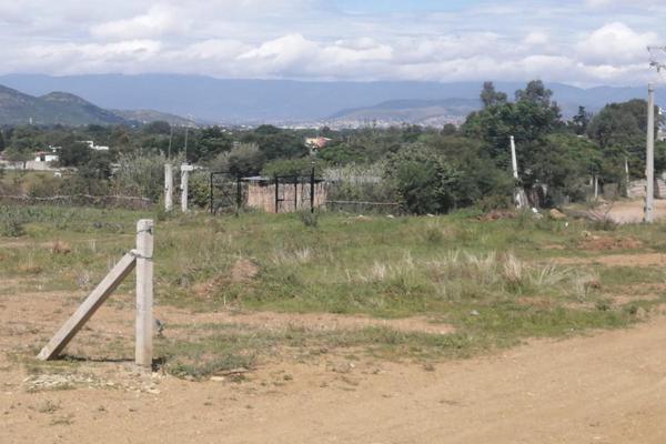Foto de terreno habitacional en venta en sin nombre , la trinidad, tlalixtac de cabrera, oaxaca, 15234557 No. 07