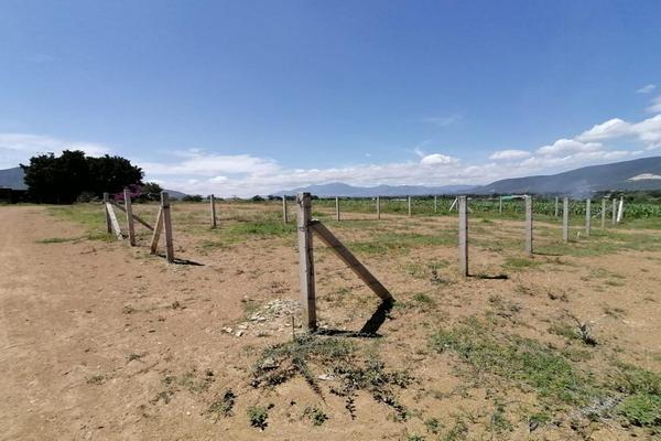 Foto de terreno habitacional en venta en sin nombre , la trinidad, tlalixtac de cabrera, oaxaca, 15234557 No. 09
