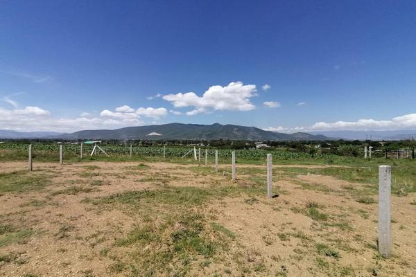 Foto de terreno habitacional en venta en sin nombre , la trinidad, tlalixtac de cabrera, oaxaca, 15234557 No. 10