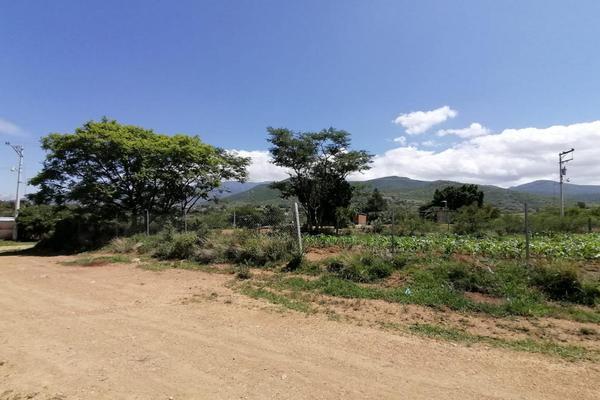 Foto de terreno habitacional en venta en sin nombre , la trinidad, tlalixtac de cabrera, oaxaca, 15234557 No. 12