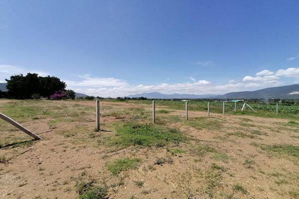 Foto de terreno habitacional en venta en sin nombre , la trinidad, tlalixtac de cabrera, oaxaca, 15234557 No. 13