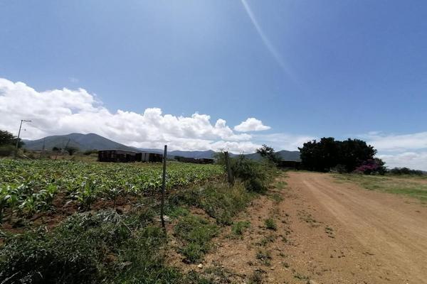 Foto de terreno habitacional en venta en sin nombre , la trinidad, tlalixtac de cabrera, oaxaca, 15234557 No. 14