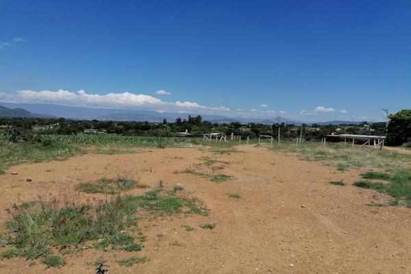 Foto de terreno habitacional en venta en sin nombre , la trinidad, tlalixtac de cabrera, oaxaca, 15234557 No. 15