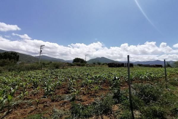 Foto de terreno habitacional en venta en sin nombre , la trinidad, tlalixtac de cabrera, oaxaca, 15234557 No. 17