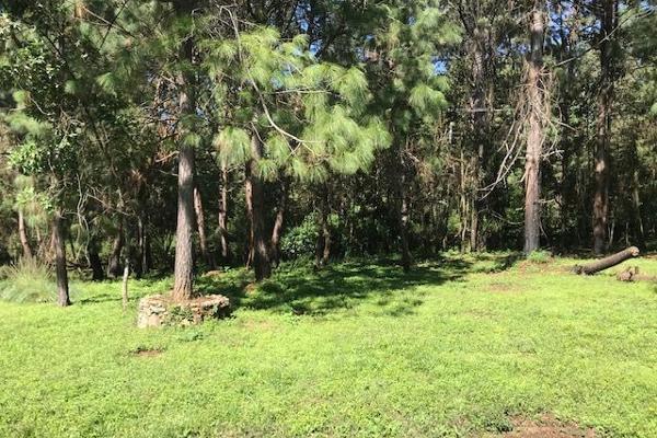 Foto de terreno habitacional en venta en sin nombre, los alamos , valle de bravo, valle de bravo, méxico, 6172938 No. 02