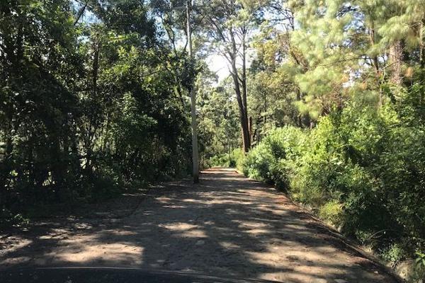 Foto de terreno habitacional en venta en sin nombre, los alamos , valle de bravo, valle de bravo, méxico, 6172938 No. 03