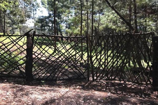 Foto de terreno habitacional en venta en sin nombre, los alamos , valle de bravo, valle de bravo, méxico, 6172938 No. 04