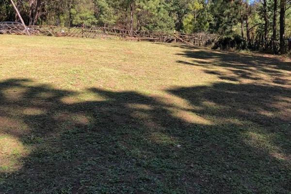 Foto de terreno habitacional en venta en sin nombre, los alamos , valle de bravo, valle de bravo, méxico, 6172938 No. 06