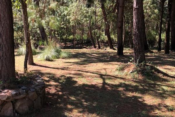 Foto de terreno habitacional en venta en sin nombre, los alamos , valle de bravo, valle de bravo, méxico, 6172938 No. 08