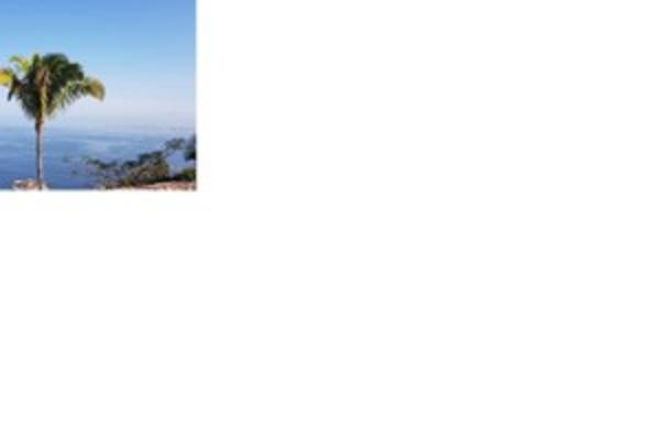 Foto de terreno habitacional en venta en sin nombre número 374 135, conchas chinas, puerto vallarta, jalisco, 5961410 No. 02