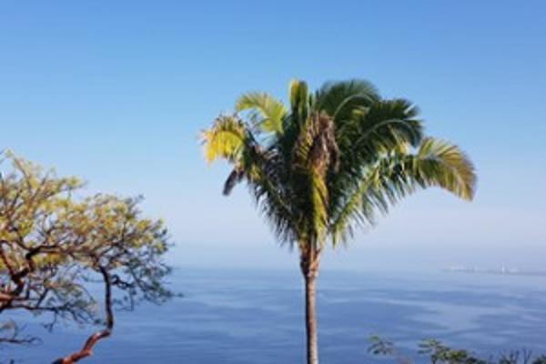 Foto de terreno habitacional en venta en sin nombre número 374 135, conchas chinas, puerto vallarta, jalisco, 5961410 No. 04