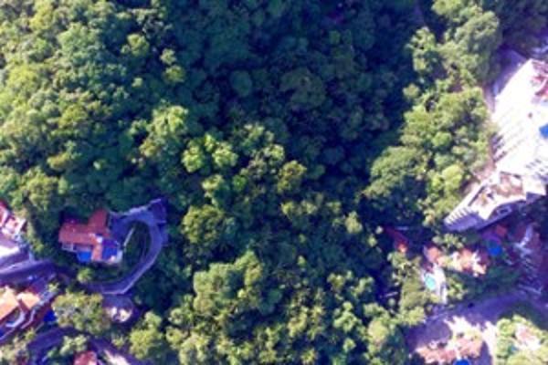 Foto de terreno habitacional en venta en sin nombre número 374 135, conchas chinas, puerto vallarta, jalisco, 5961410 No. 10