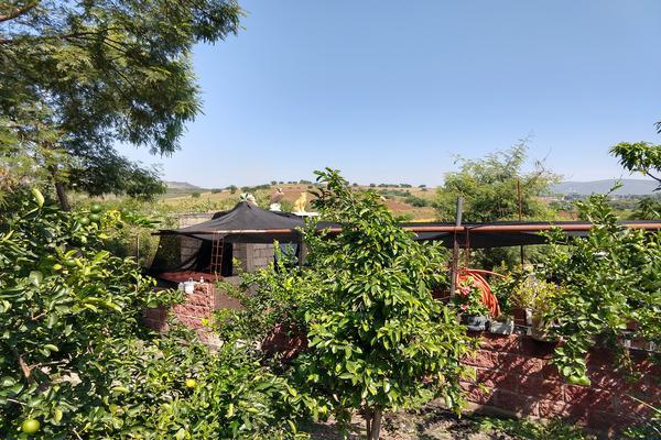 Foto de terreno industrial en venta en sin nombre , santa rosa 30 centro, tlaltizapán de zapata, morelos, 9916882 No. 15